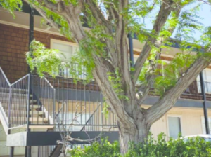 Texas Multifamily For Sale - Eureka Business Group